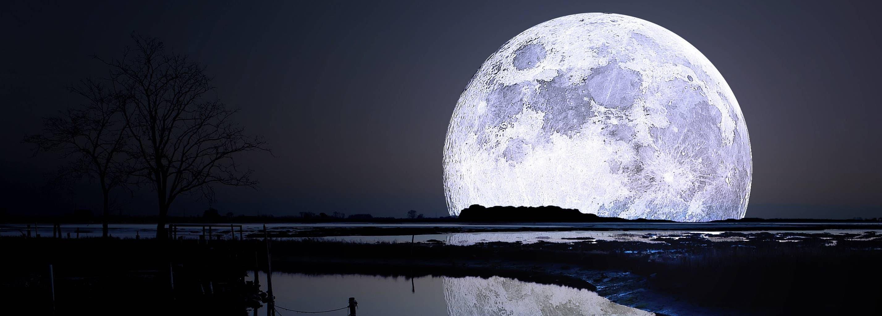 Nat i naturen