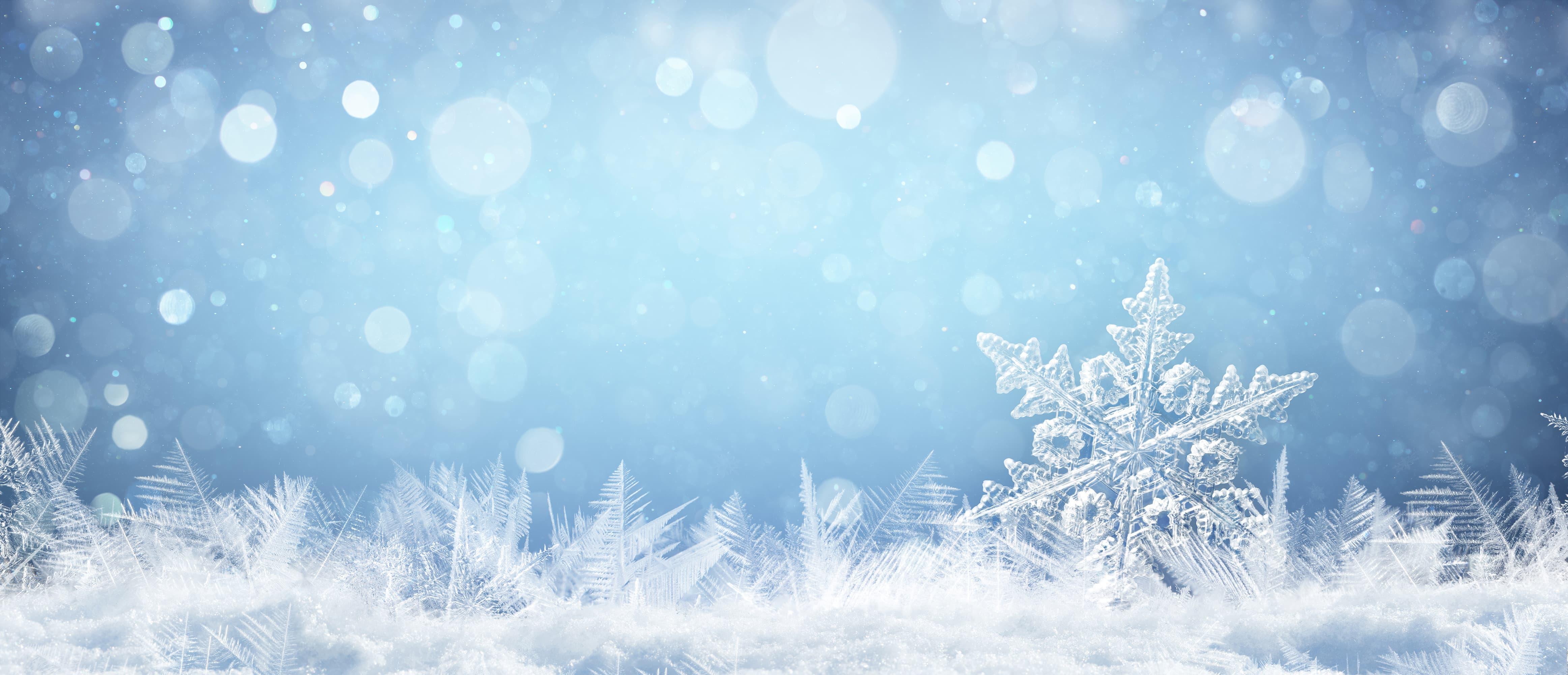 Ferieaktiviteter for hele familien i vinterferien