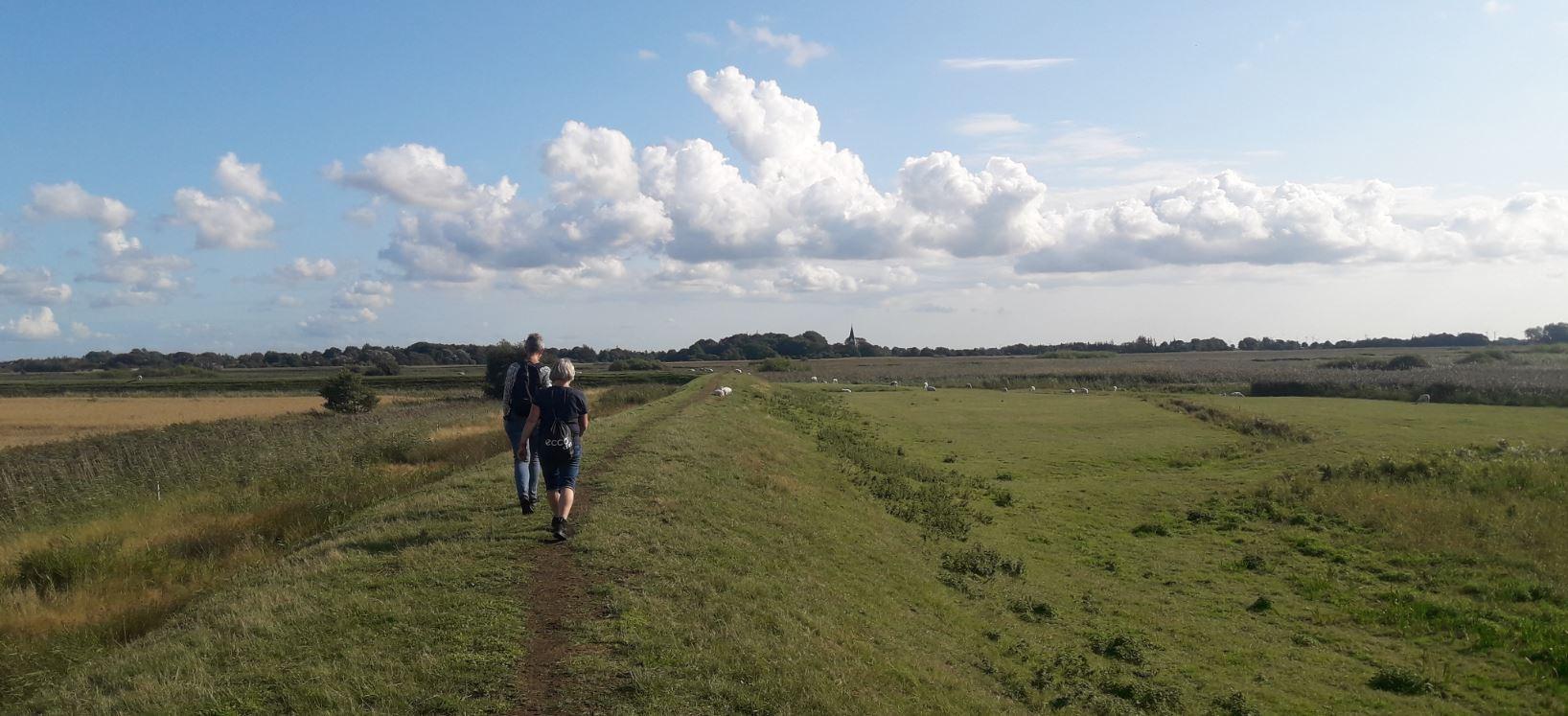Vandretur med guide i marsken omkring Rudbøl