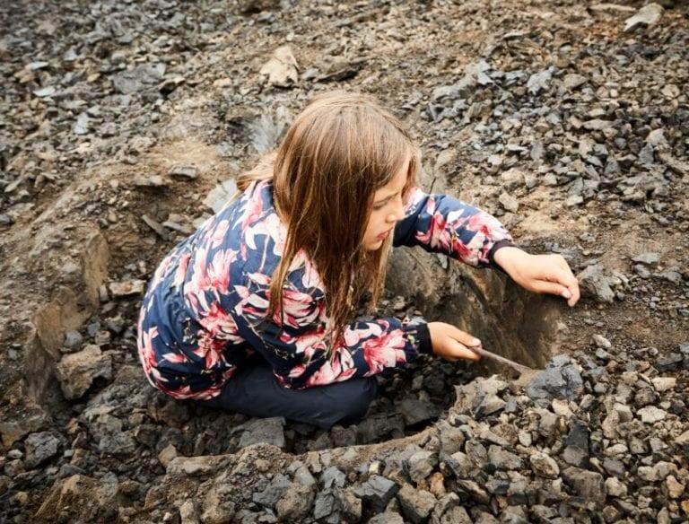 Kom ud og grav fossiler op
