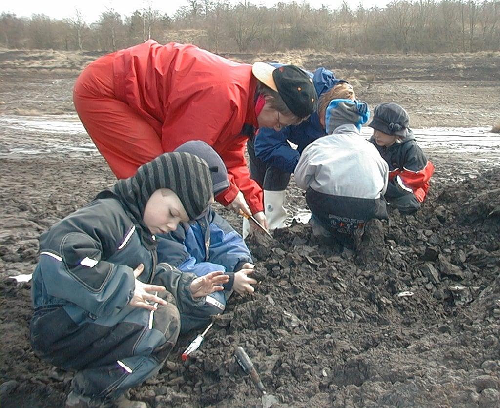 Fossiljagt for børn