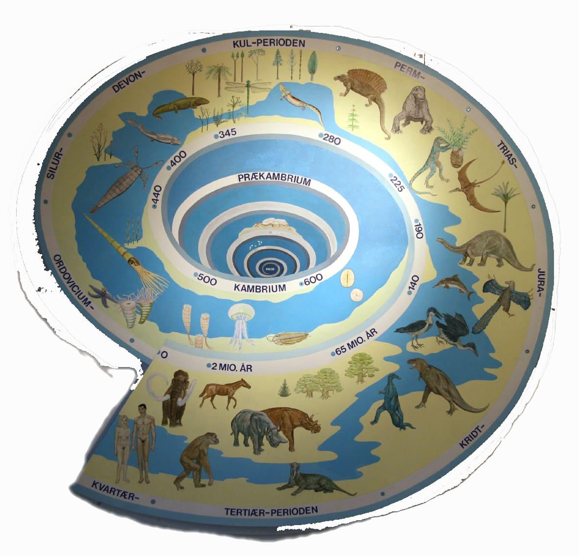 Miocæns mægtige Megalodon